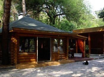 Уютный кафе - ресторан, Пицунда