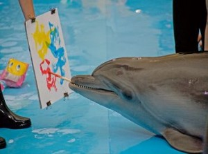 На представлении проходит аукцион по продаже картинки, нарисованной дельфином