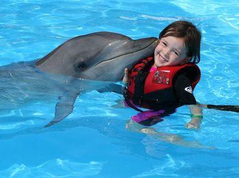 Дельфины охотно играют с маленькими посетителями