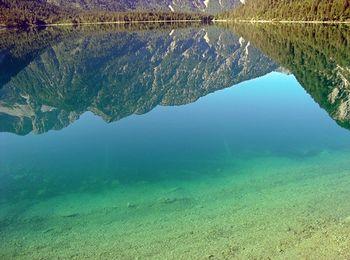 Сине - зеленый цвет воды