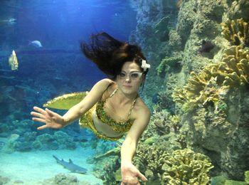 Ежедневные экскурсии в океанариуме