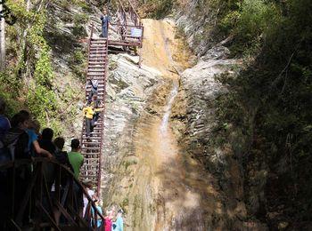 Путешествие по лесу по отвесной лестнице