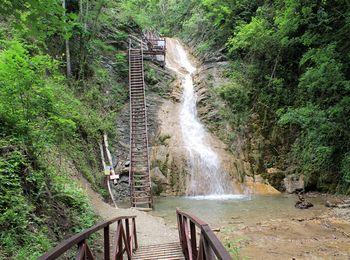 "Водопад ""Шнурок"" в зарослях папоротника и плюща"