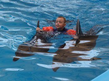 Дельфинотерапия, плавание с дельфинами в дельфинарии в районе Набережной