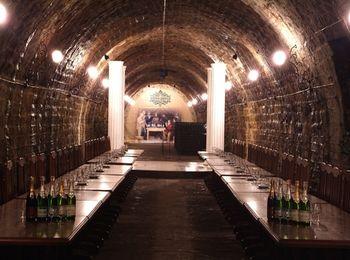 Знаменитый завод игристых шампанских вин Абрау-Дюрсо