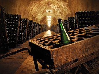 Знаменитый завод шампанских вин в Абрау Дюрсо