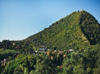 В окружении очень густых лесов расположена Иверская гора