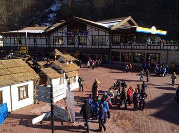 Уютное кафе в окруженнии густых лесов и белоснежных гор