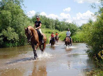 Школа конного спорта Россия - проводит методику иппотерапии