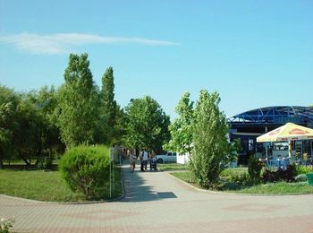 Просторный оживленный зеленью парк