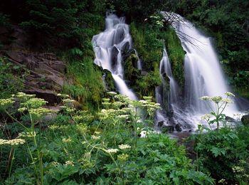 увлекательная прогулка к Пшадским водопадам