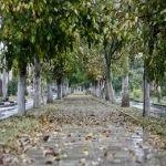 Октябрь в курортном городе Анапе