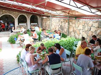 Блюда различной кухни в летнем уютном кафе
