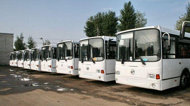 Девять белых автобусов на влажной стоянке