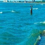 Синие волны июльского моря