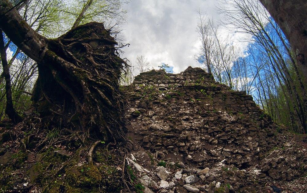 Дерево с вырванными корнями возле древней крепости