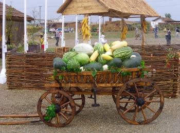 Красивая деревянная телега с сочными арбузами и сладкими дынями