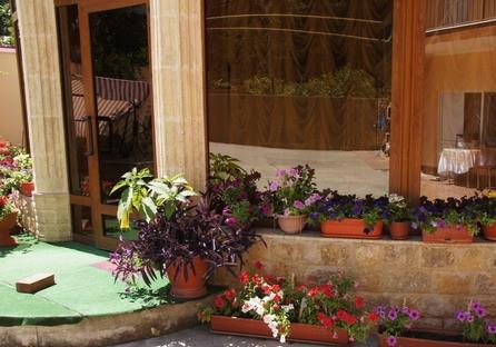 Во дворе и перед дверями корпусов много цветущих растений
