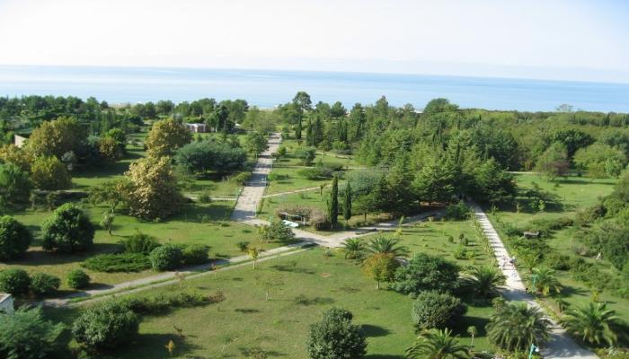 Чудесный парк с пышной зеленью и чистыми аллеями