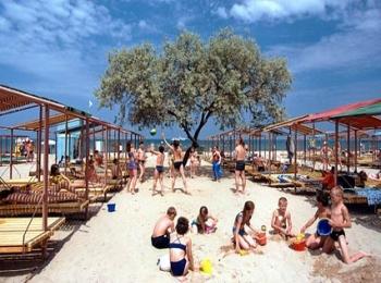 Солнечный пляж с большим старым деревом и кучей отдыхающего народу