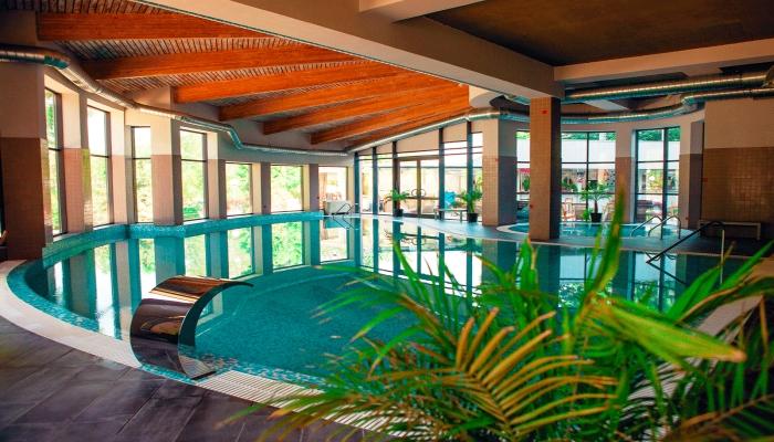 Ухоженный крытый бассейн с папоротником и деревянным потолком