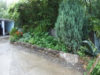 Цветущий и полный зелени внутренний двор