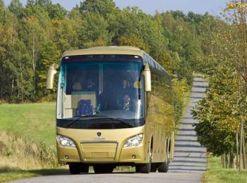 Золотистый автобус - фото спереди - на дороге летом