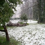 Зимой в Сочи зелено, но может быть и снег