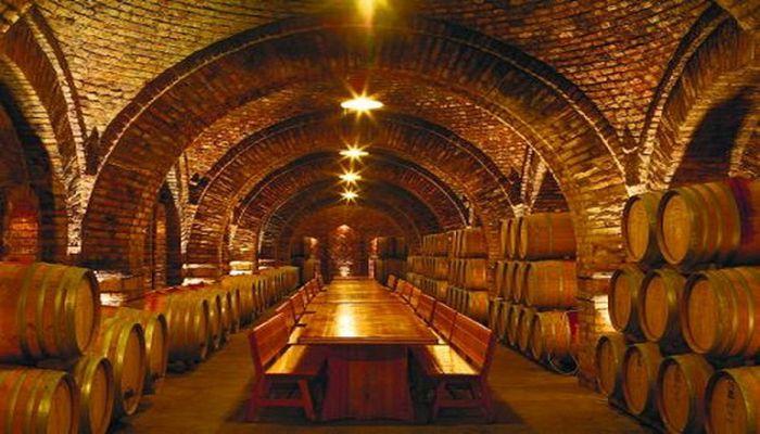 Подвал для хранения вин