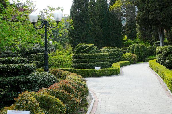 Живописный Гурзуфский парк