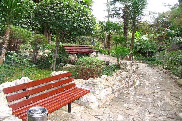 Прекрасная зеленая территория санатория