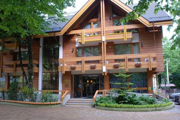 Гостевой дом Шале Поляна 3