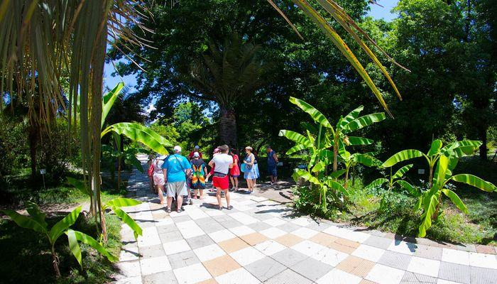 Интересные экскурсии по ботаническому саду