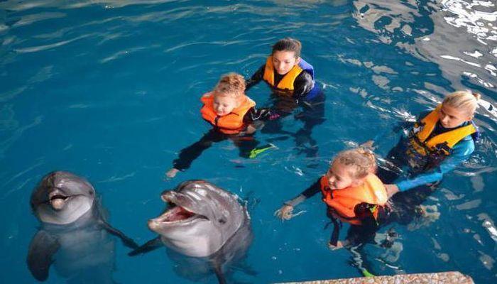 Сеансы дельфинотерапии