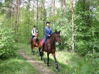 Правила конной прогулки