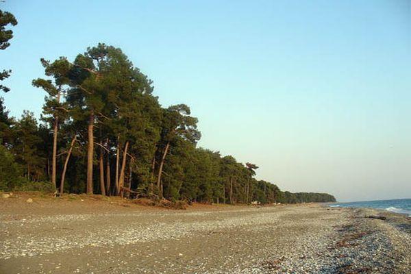 Берег моря в Пицунде