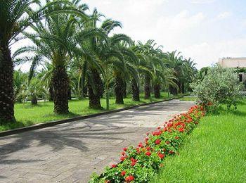 Множество парков и живописных мест