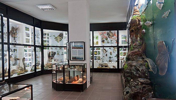 Музей истории и природы
