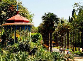 Никитский-ботанический-сад3
