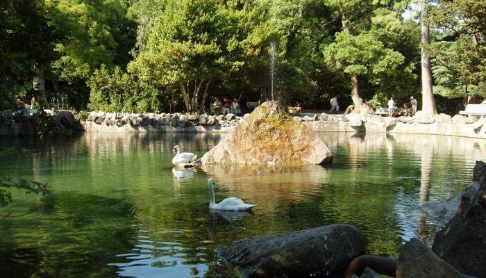 Красивейшее озеро на территории парка